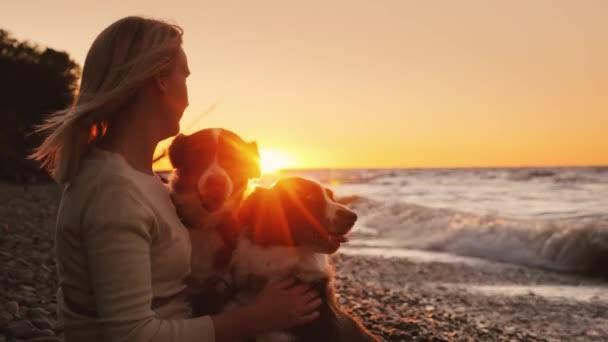 Boldog tulajdonosa két kutyával játszik-val pets a tengerparton naplementekor
