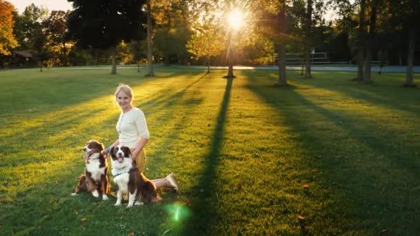 Porträt einer glücklichen Hundebesitzerin, die mit Haustieren im Park spielt, lächelt, blickt in die Kamera