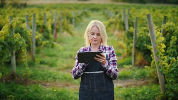 Mladá žena zemědělec využívá tablet u vinice