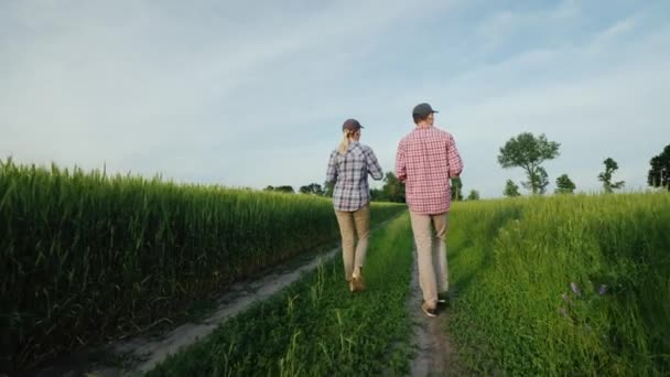 Two young farmers are walking along a country road among a field of wheat, talking