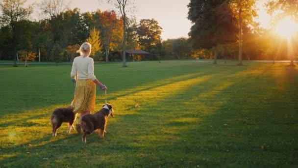 Herbstspaziergang im Park mit zwei Haustieren. Frau geht mit ihren Hunden spazieren
