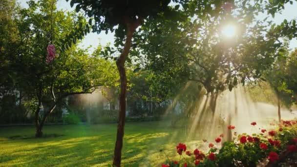 Pohled na krásnou zahradu, kde svítí lui slunce