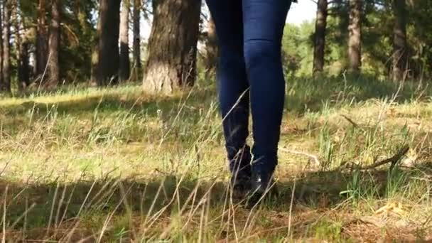 A girl walks through the forest. Legs of a girl in jeans close-up
