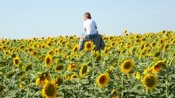 Zemědělec muž má s sebou svého syna přes pole slunečnic.