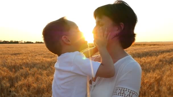 A happy mother kisses a child holding him in her arms in a wheat field on a sunset background