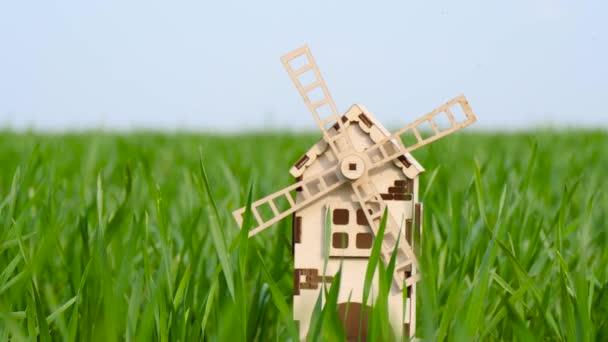 V zelené pšeničné trávě je malý větrný mlýn. Pojetí zemědělství, agronomie, sklizně a pěstování.