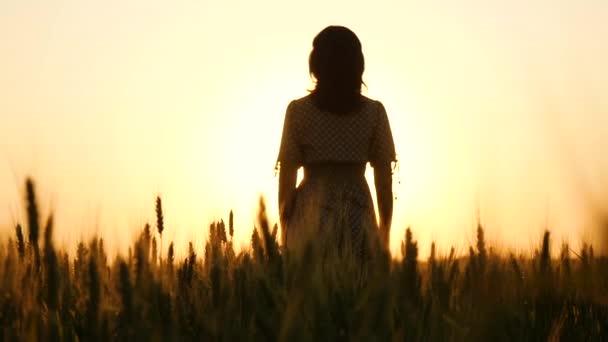 Kamera pomalu stoupá mezi zlaté uši pšenice. Dívka stojí na slunci při západu slunce a zvedá ruce.