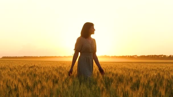 The girl in the dress is on the field, touching the ears of wheat at sunset. Agribusiness, motivation, travel, inspirational