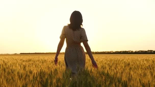 V krásných šatech po zlatém poli při západu slunce prochází brunetka..