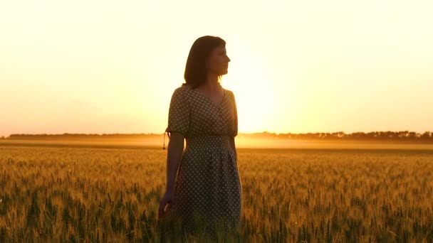 A girl in a beautiful dress walks in a golden wheat field in slow motion during sunset.