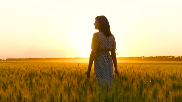 A young woman in a beautiful dress walks in a field of golden wheat in slow motion during sunset.