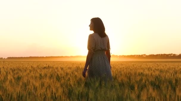 A girl in a dress walks through a wheat field, touching the spikelets of wheat, inspired by nature and a beautiful sunset.