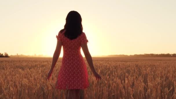 A girl walks through a wheat field at sunset.