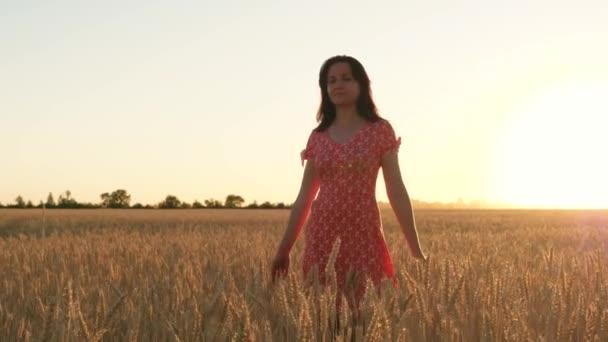 Glückliche Frau genießt den Sonnenuntergang und geht durch ein Weizenfeld. Verbindung zur Natur, Reisefreiheit