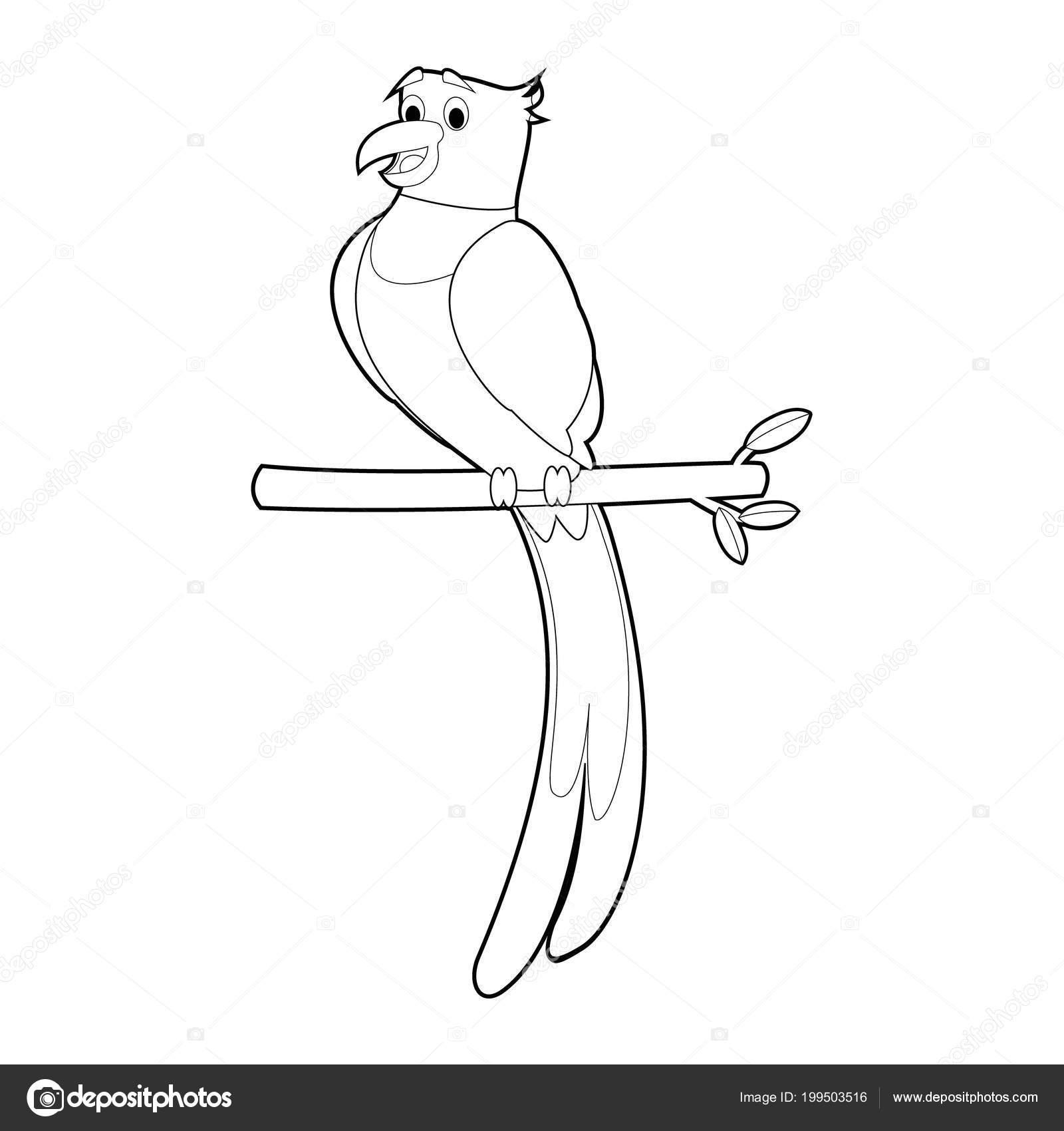 Fácil Para Colorear Dibujos Animales Para Niños Quetzal