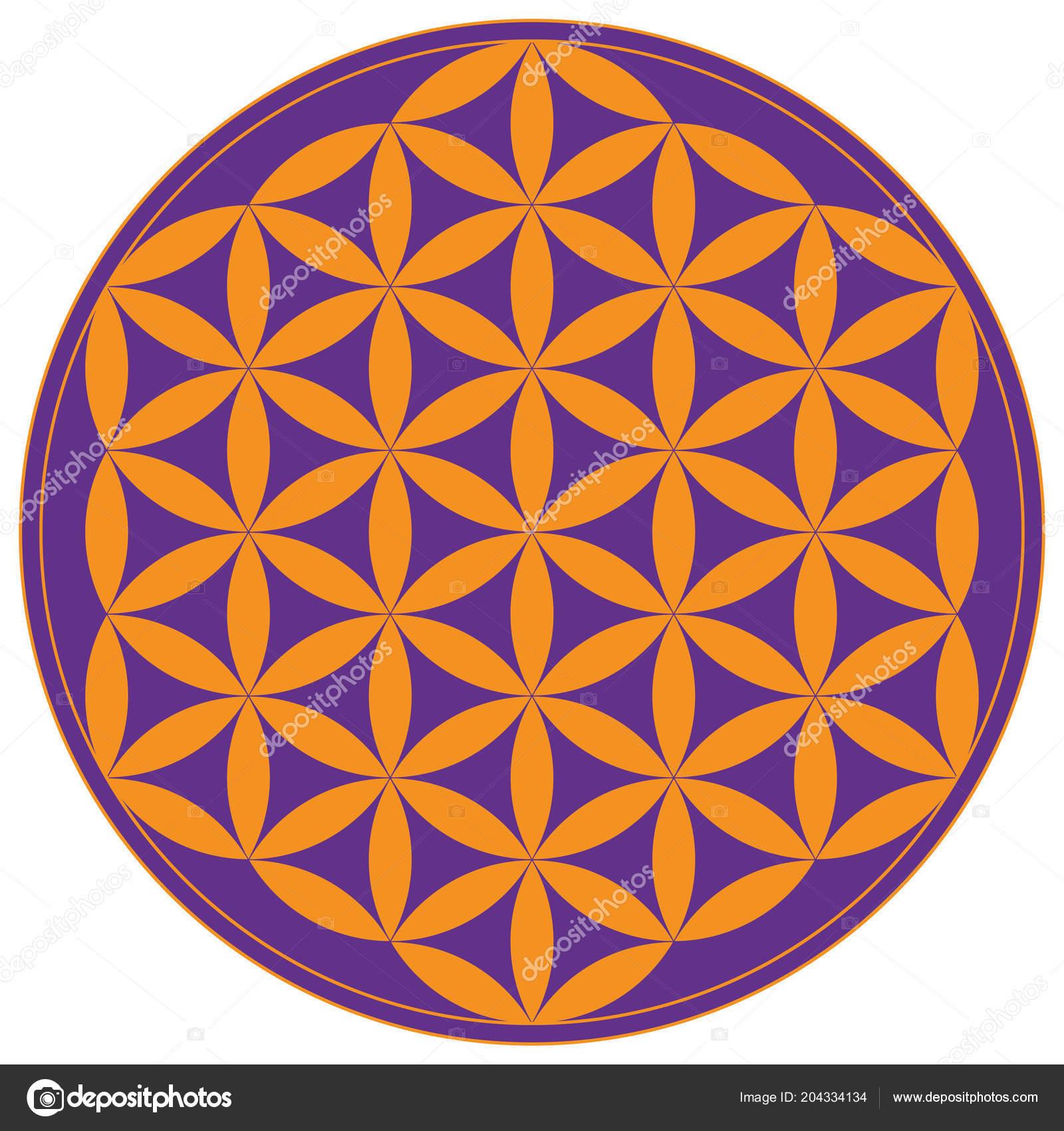 Colorful Geometrical Figure Sacred Geometry Flower Life Vector Illustration — Stock Vector