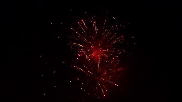 Fireworks Display Night Christmas