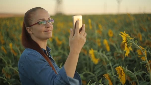young beautiful Caucasian middle-aged woman with red hair taking a selfie on the phone in the field with sunflowers in the evening at sunset. modern digital technology.