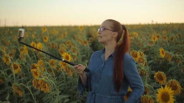 young beautiful Caucasian woman blogger in glasses with red hair shoots video for social networks on smartphone in the field with sunflowers in the evening at sunset.
