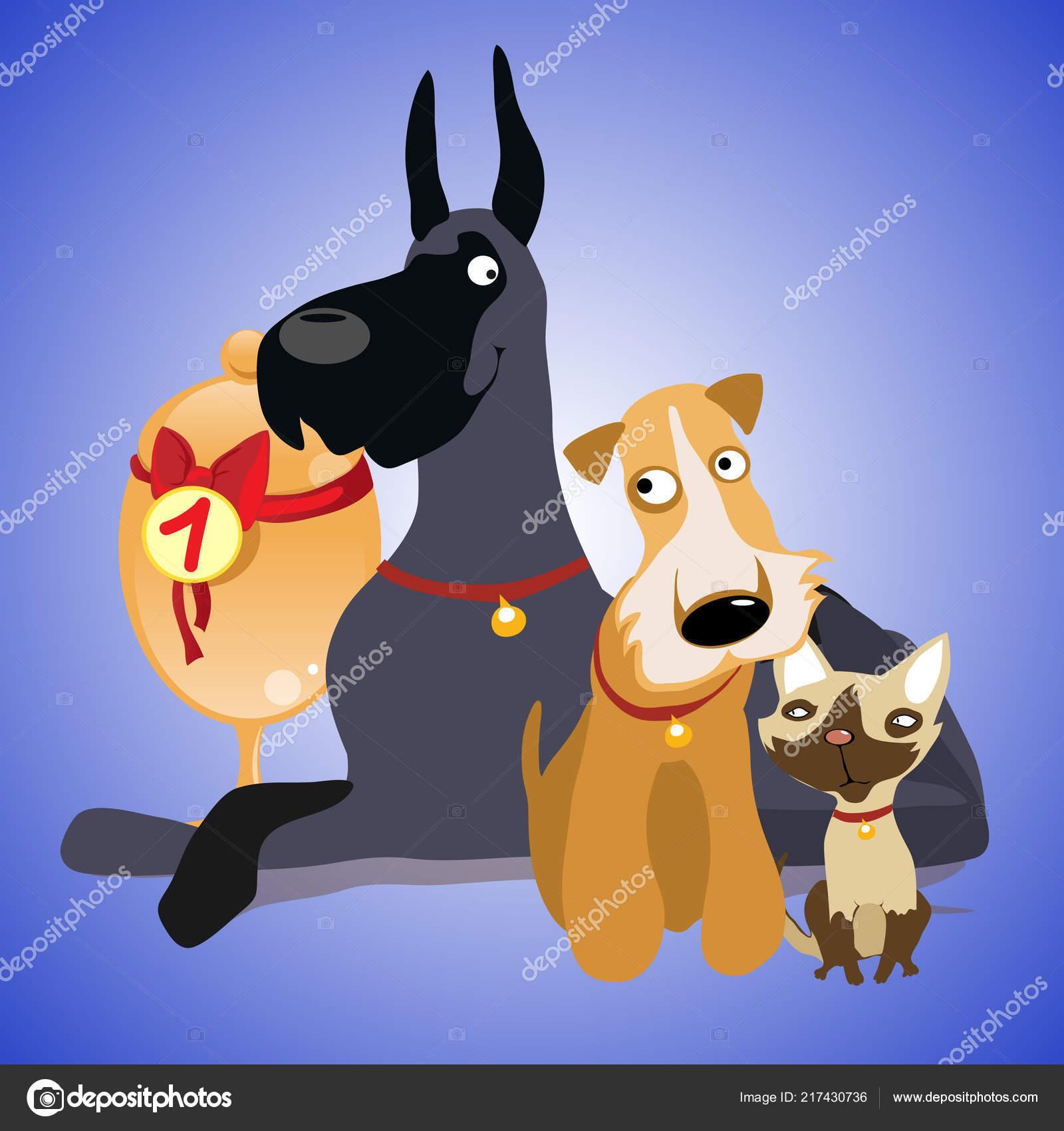 cdbf78136aa41 Lindo cartel con una fotografía de mascotas. Exposición de perros y gatos.  Primer plano ilustración de vector de dibujos animados — Vector de ...