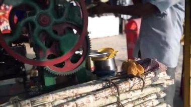 Sugar cane Stock Videos, Royalty Free Sugar cane Footages