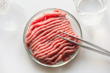 Laboratory studies of artificial meat. Minced meat in glass Petri dish. Chemical experiment.