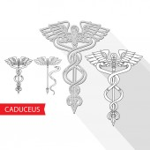 Fotografie Caduceus Medical Symbol. Vector illustration of a snake and staff isolated on white. Pharmacy icon.