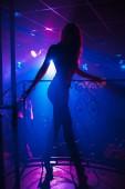 Fotografie Go-Go-Tänzerin Mädchen posiert in einem Nachtclub auf der Bühne