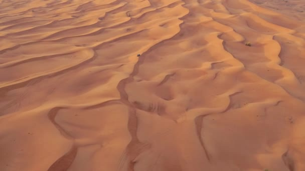 AERIAL. Hight flight above car. Desert safari car sand dunning in the Dubai desert during sunset