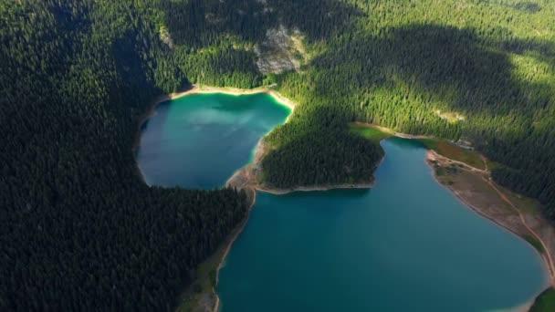 Letecký pohled okouzlující pohled na horské jezero s lesem
