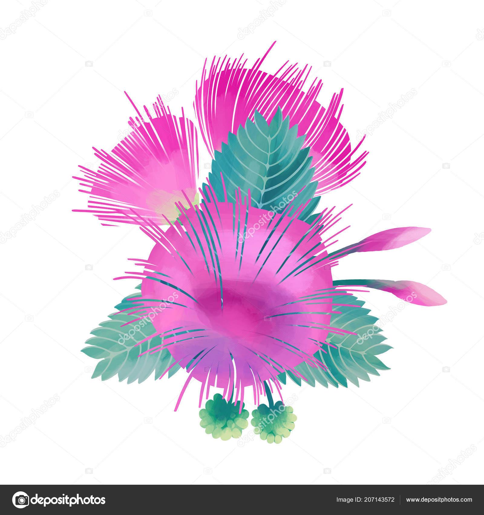 Pastel Colored Design With Albizia Flowers Stock Photo