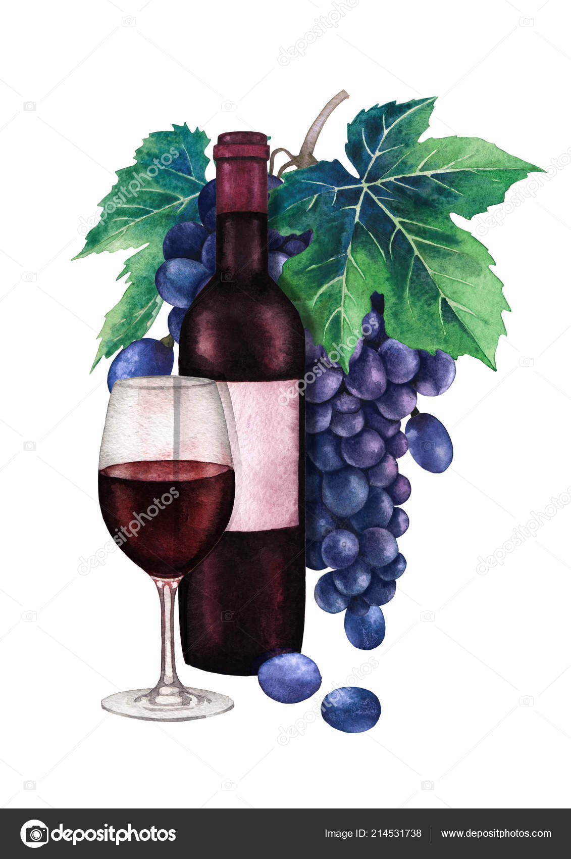 Watercolor Glass Of Red Wine Dark Bottle And Bunch Blue Grapes Stock Photo Image By C Homunkulus28 214531738