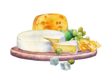 Watercolor design witn different types of cheese and grapes