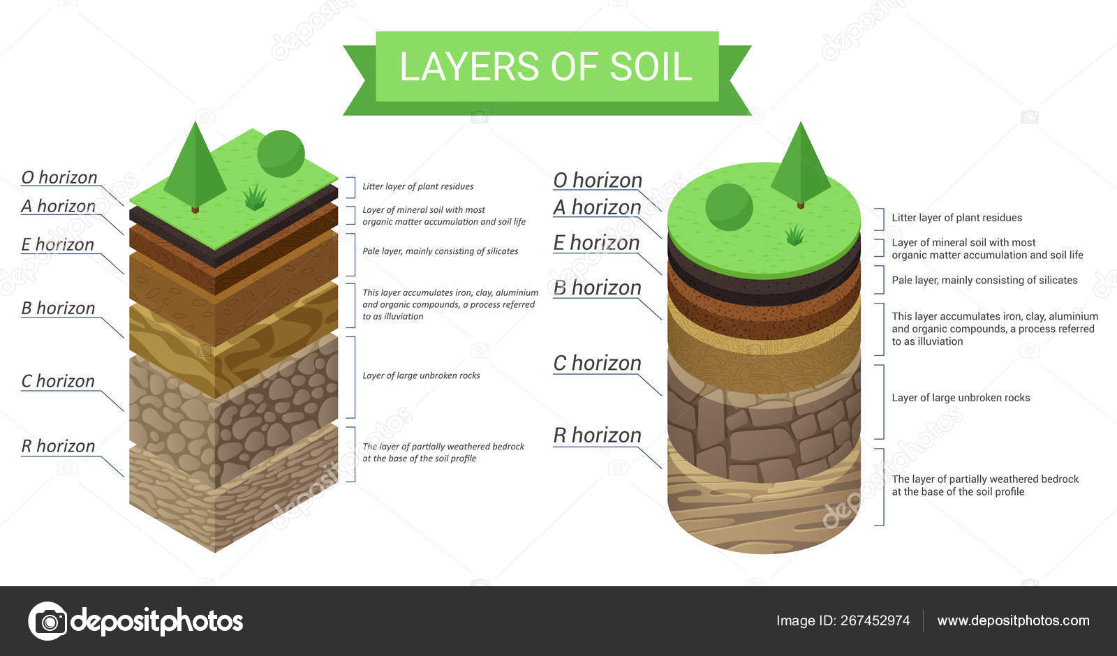 education isometric diagram and detailed description of soil layers  plant  residue, green grass,