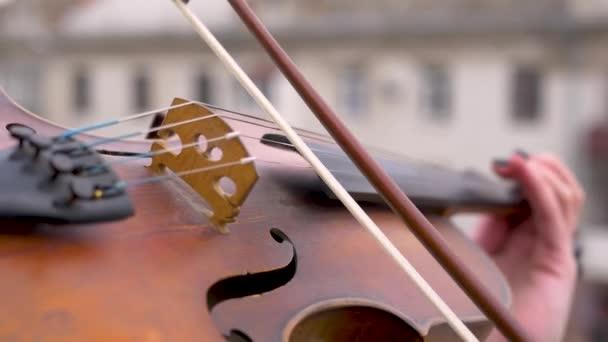 A hegedű közelről játszik. A húrok, amelyeken a fiddlestick mozog nagyon gyorsan. Virtuóz játszik egy zenei eszköz. Tehetséges zenész.