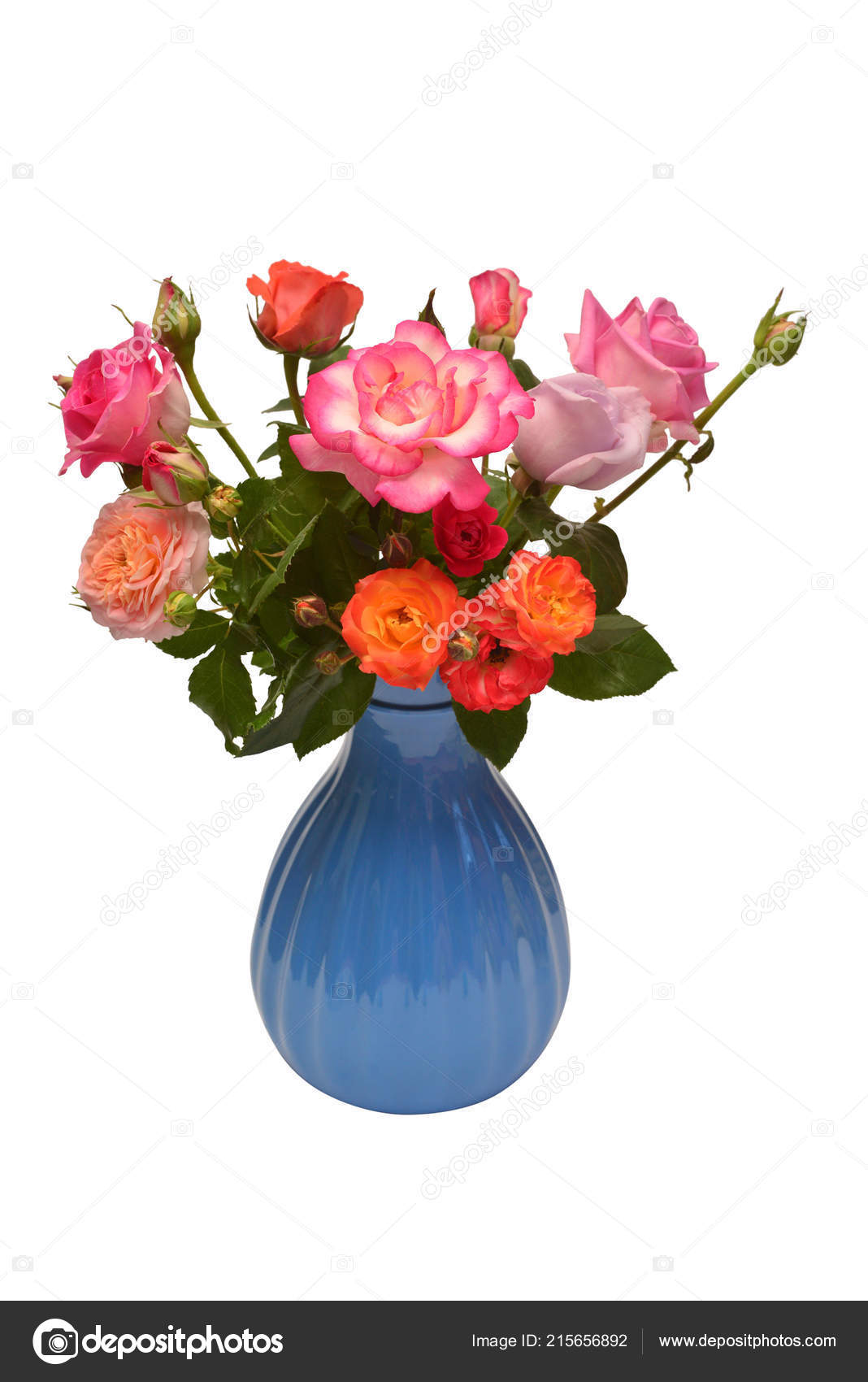 Flower Arrangement Bouquet Roses Vase Isolated White Background