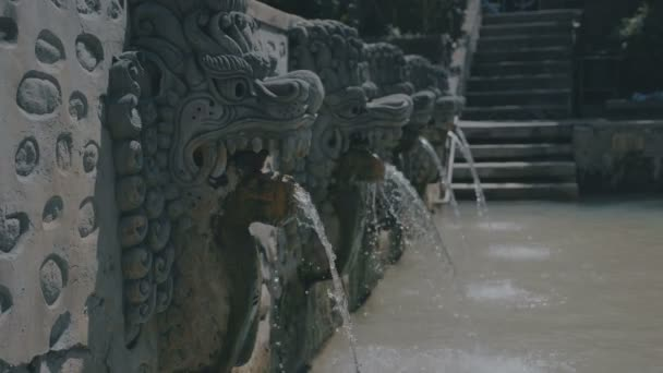 Víz áramlik dragon szobor: Bali hot springs