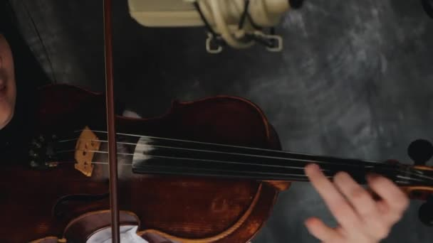 Woman violinist playing the violin