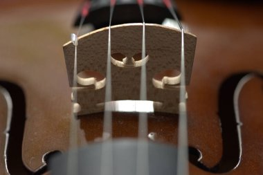 The classic violin bowed instrument