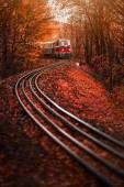 Fényképek Budapest, Hungary - Childrens train on the S track in the Hungarian woods of Huvosvolgy with beautiful autumn forest and foliage