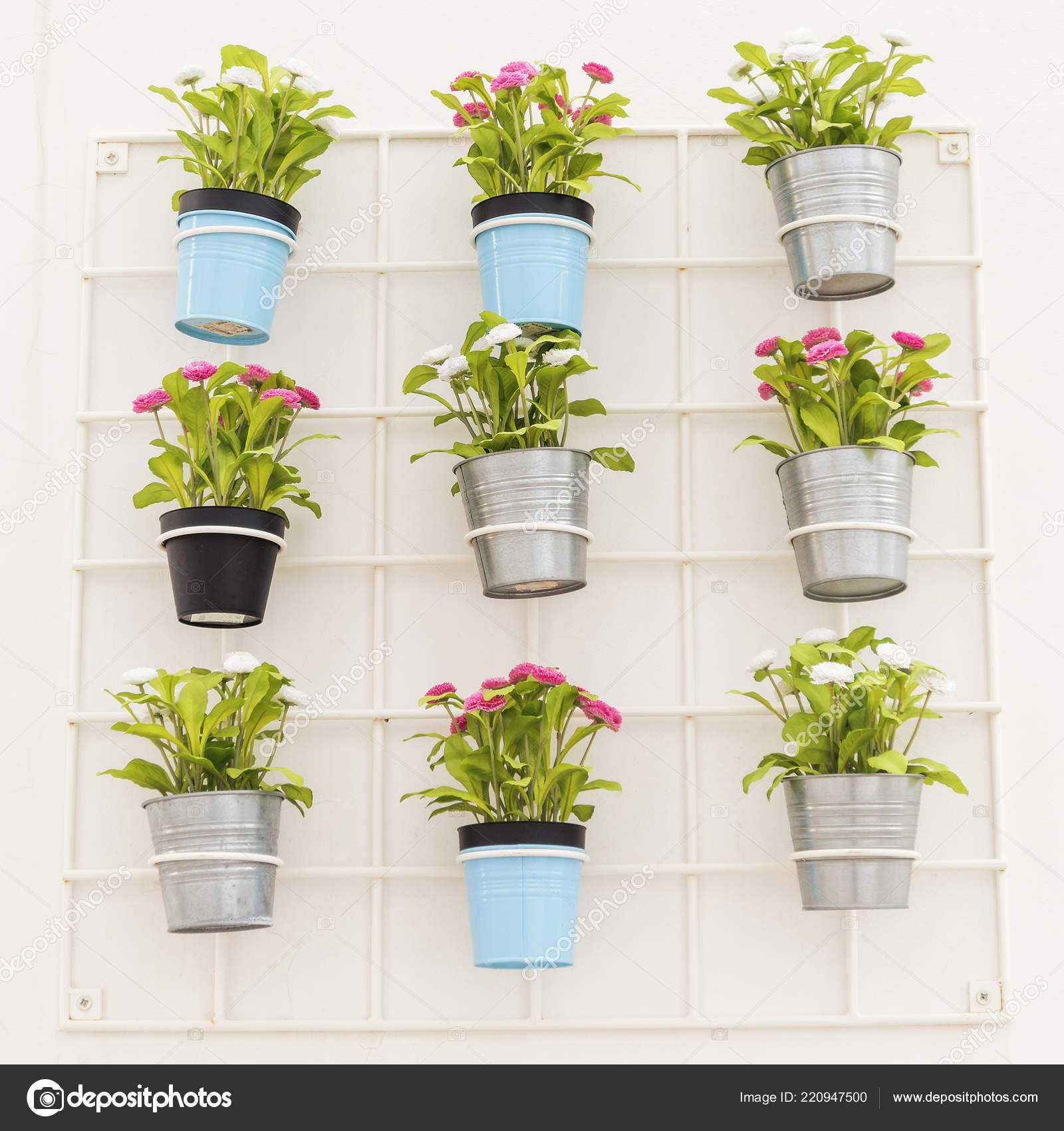 Kolorowe Doniczki Wiszące Białej ściany Zdjęcie Stockowe