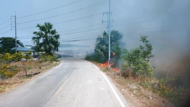 Oheň trávy poblíž domů spaluje keře a elektrické dráty. Destruction by Surface Fire while dry season, climate crisis. Záběr 4k