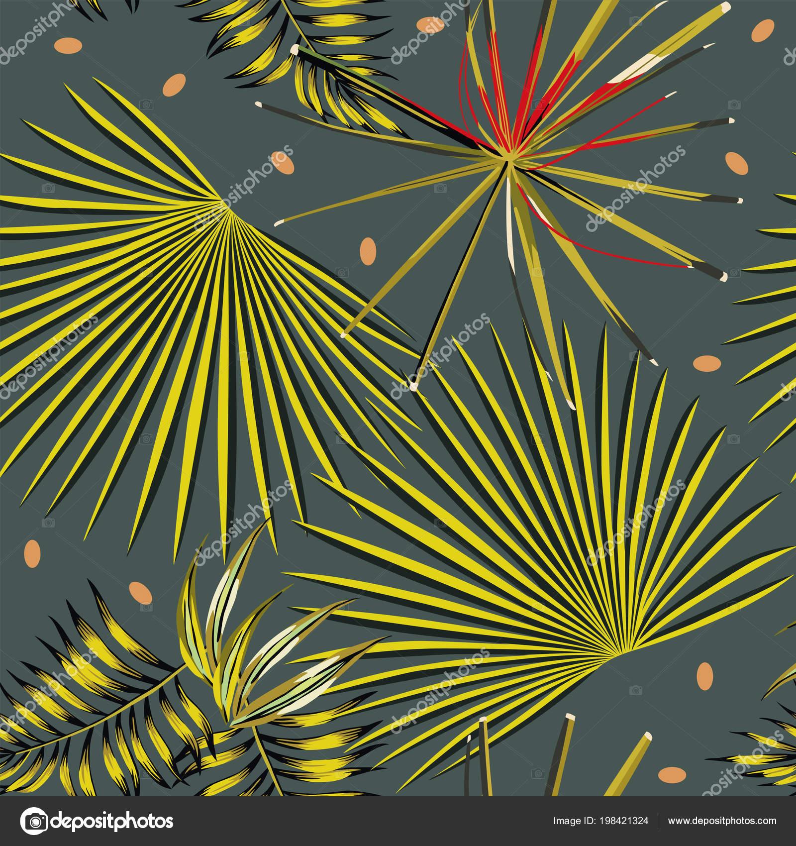 Abstrait Couleur Tropicale Feuilles Fond Gris Fonce Papier Peint
