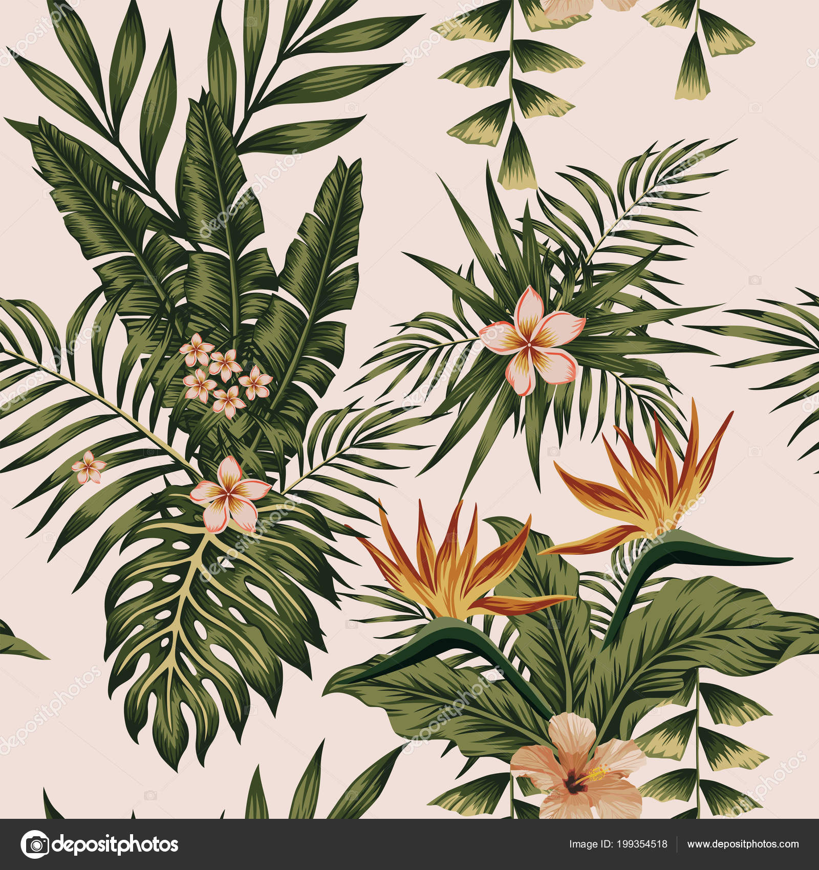 Trendy Illustration Exotic Flowers Hibiscus Plumeria Bird Paradise Plants Banana