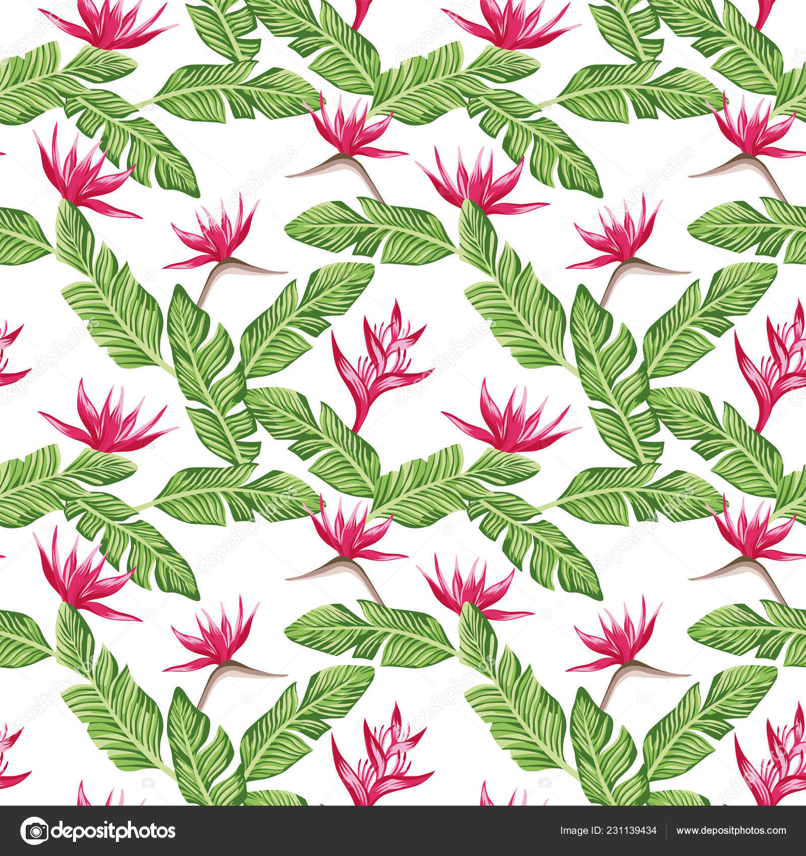 Seamless Vector Summer Composition Green Banana Leaves Red
