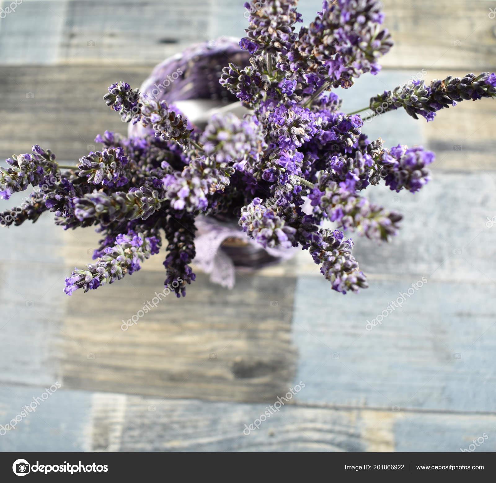 22d9f396b0b Λεβάντα Ένα Απόθεμα Εικόνες Φόντο Ξύλινη Μάτσο Γαλλικά Λεβάντα Χαλαρωτικό —  Φωτογραφία Αρχείου