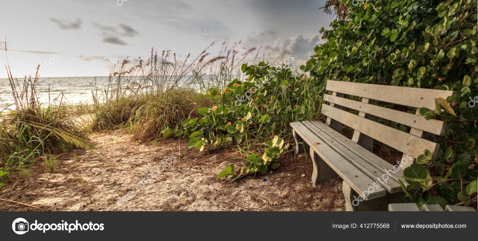 Wood Bench Overlooks White Sand Path Leading Delnor Wiggins State Stock Photo Image By Stephstarr9363 Gmail Com 412775568