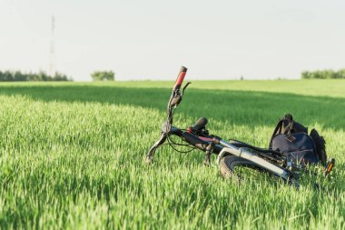 Black bicycle on grass green with backpacks