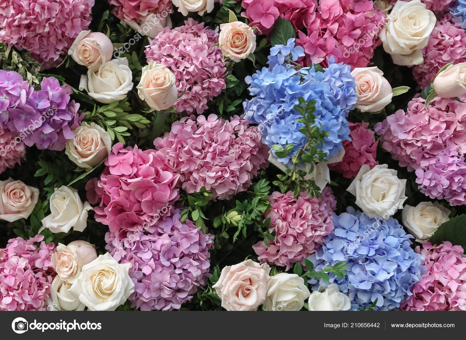 Blumen Hochzeit Wand Dekor Mit Farbe Hortensien Und Rosen Hochzeit
