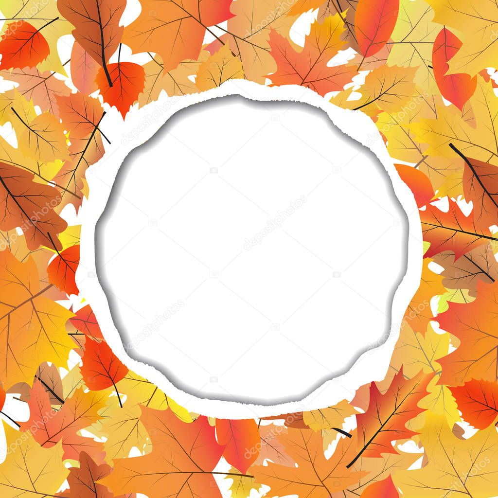 Vector background with ripped paper and space for text. Autumn leaves pattern.